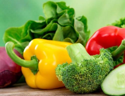 Liquid Fertilisers to Grow Healthy Plants